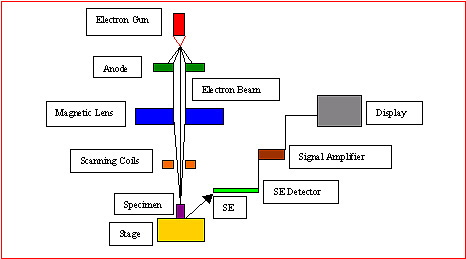nanotechnology_sem_diagram