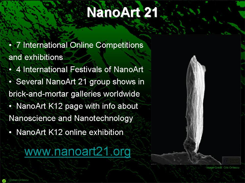 NanoArt-21-accomplishments-nanoart101-slide17