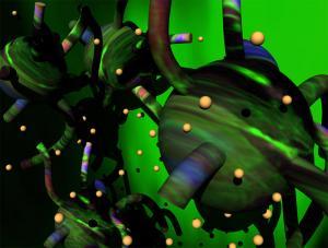 Chris Robinson - Untitled (Florescent Fibroblasts)