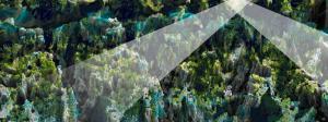 Han Halewijn - The Netherlands - Treasures of Earth