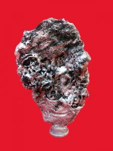 Serge Ntamack - La metamorphose du visage