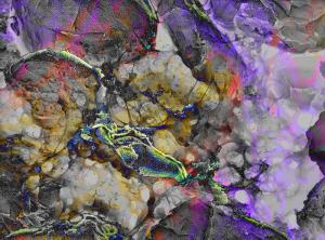 Steven Pollard - USA - Virus - nanoart