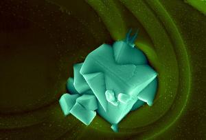 Daniela Caceta - Brazil - Yttrium  Barium Copper Oxide - Emerald Lake