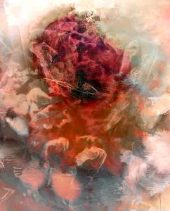 David Hylton - Blossom