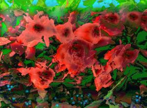Elena Lucia Constantinescu - Romania - Rose Garden