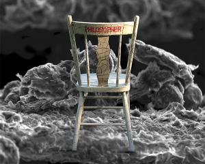 Michael Poulton - Canada - Nano Chair