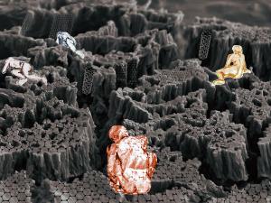 Pilar Ruiz-Azuara - Mexico - Exploring Nanotubes